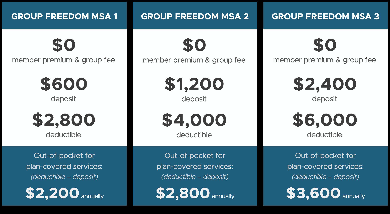group msa plan designs