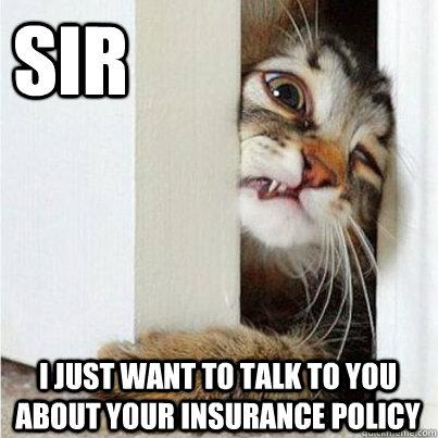 meme-insurance-cat